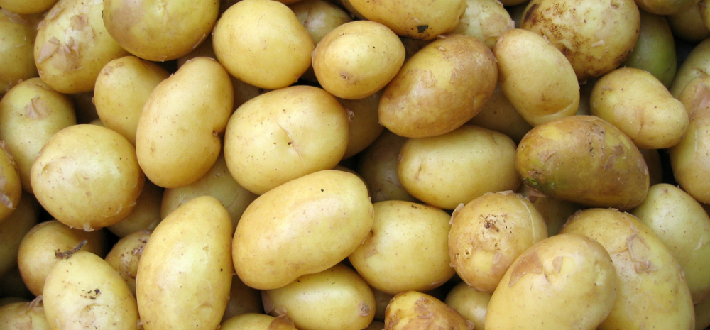how many calories in a portion of new potatoes